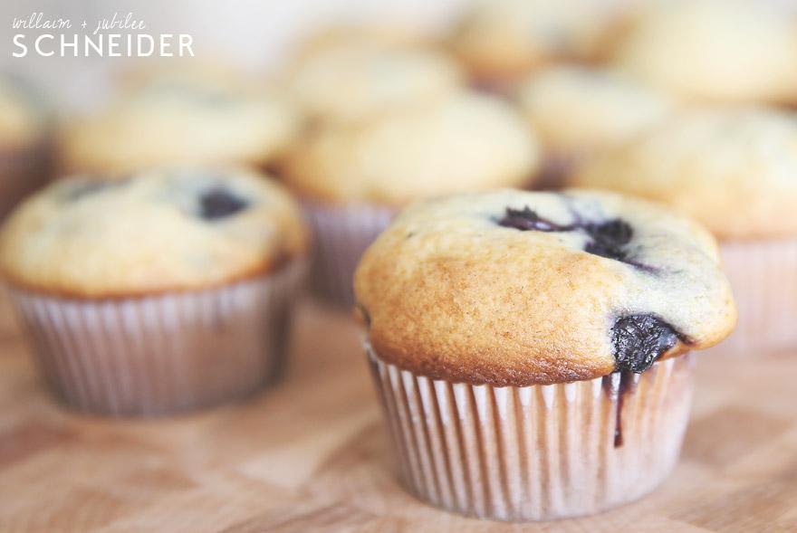 muffins-4