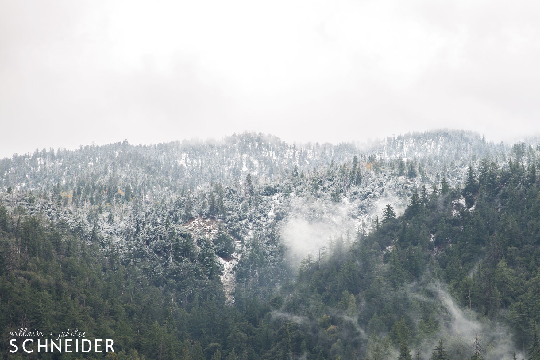 snow-7@2x
