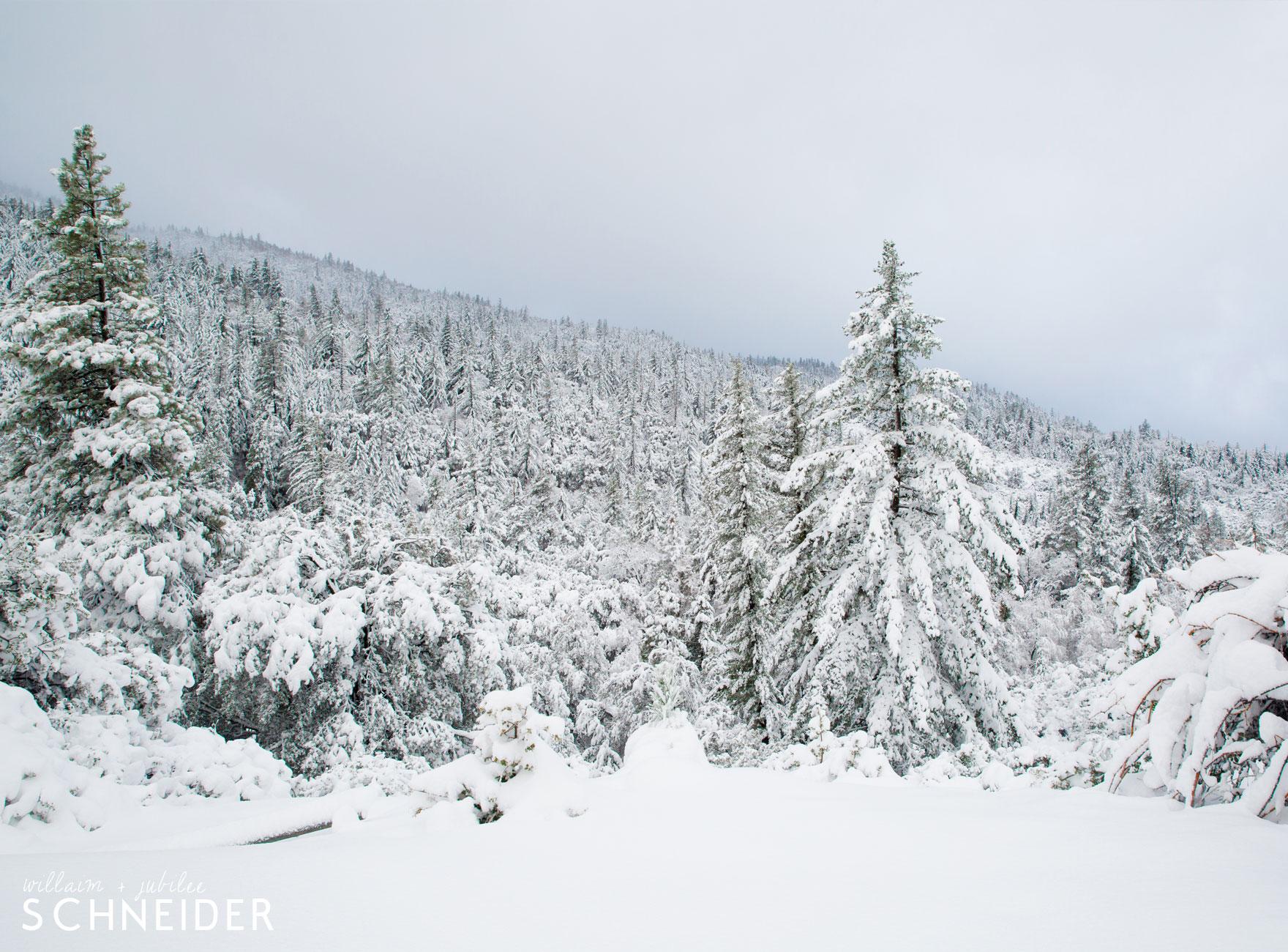 big-snow-11