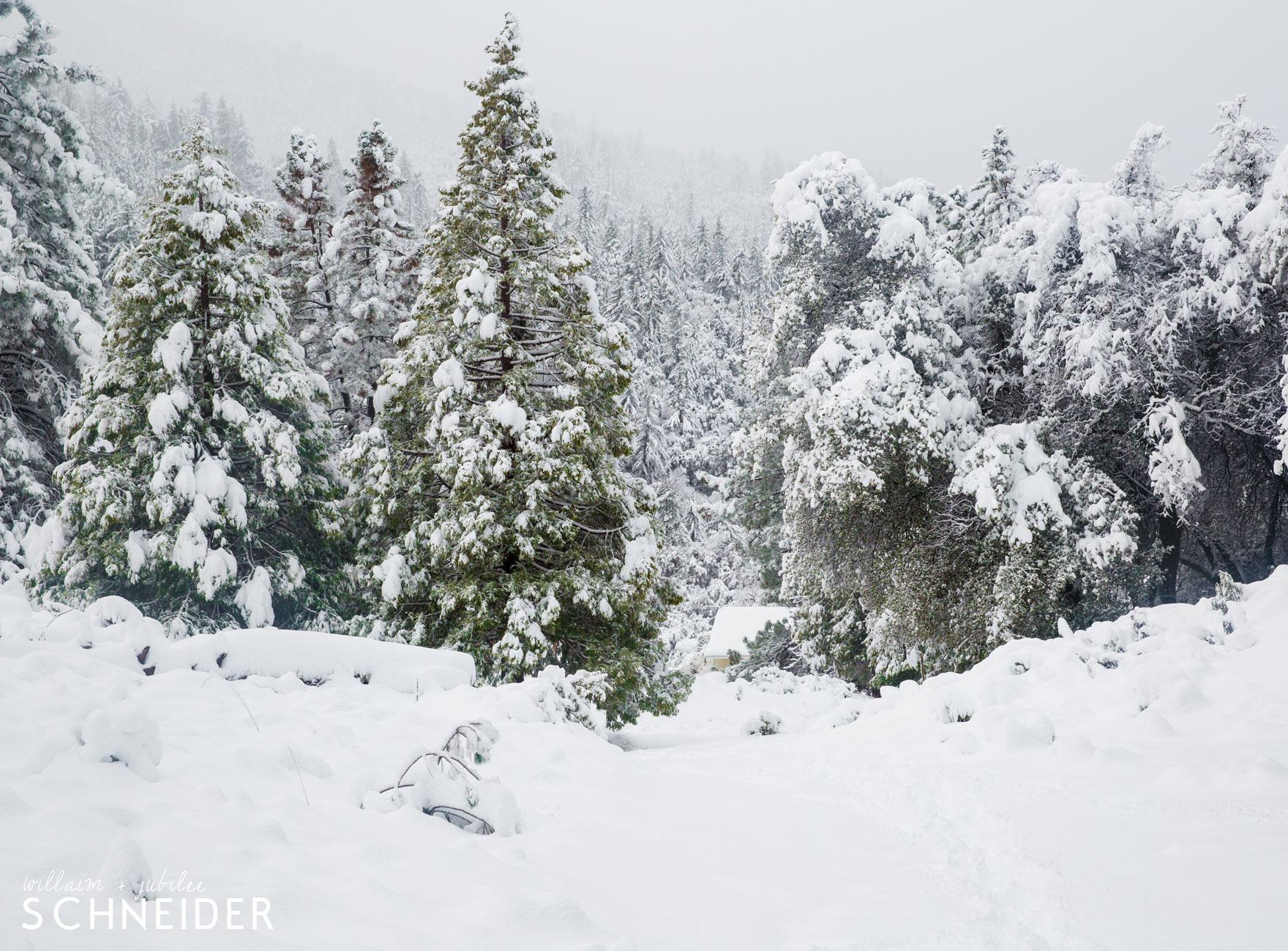 big-snow-4