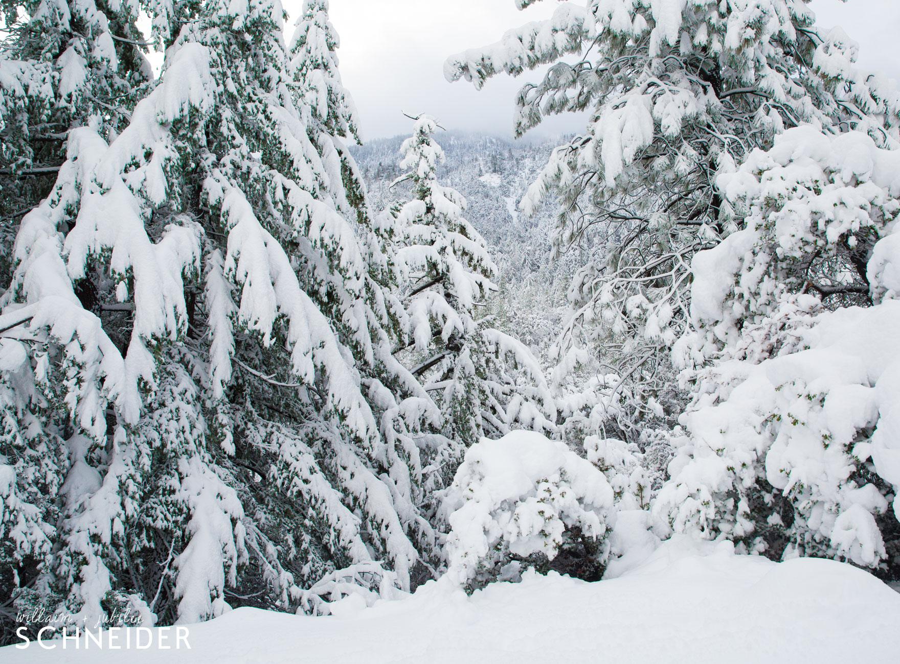 big-snow-5