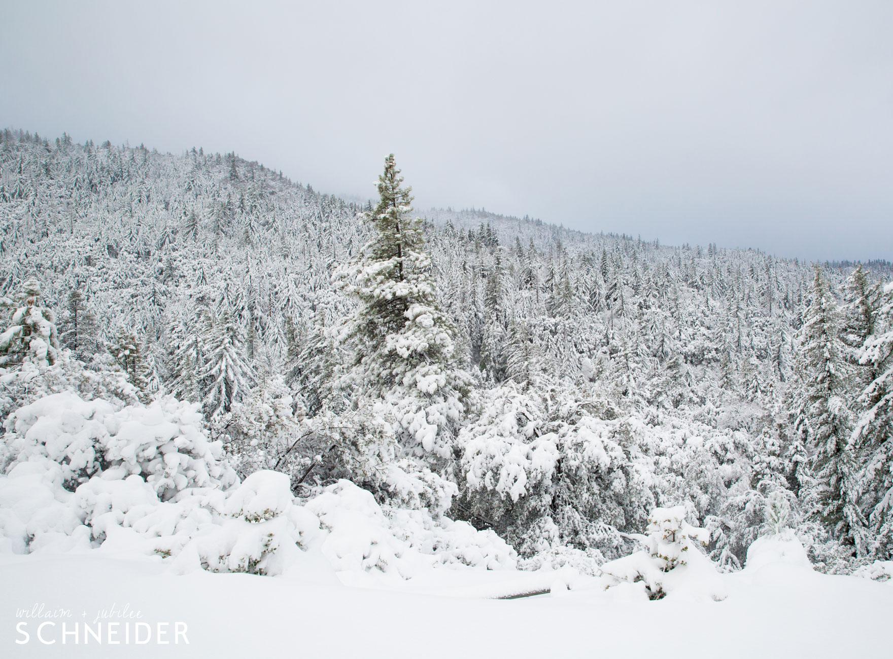 big-snow-7