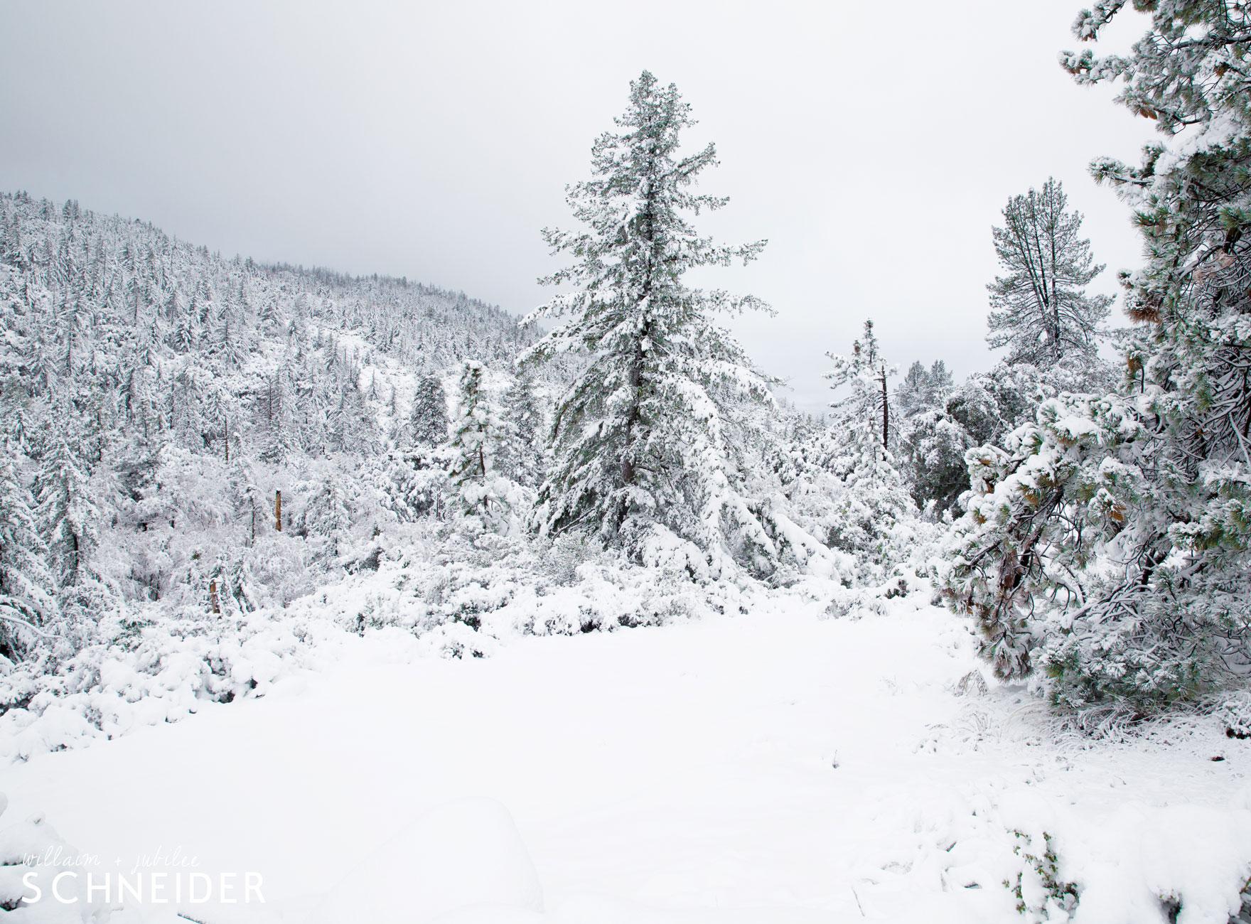 big-snow-9