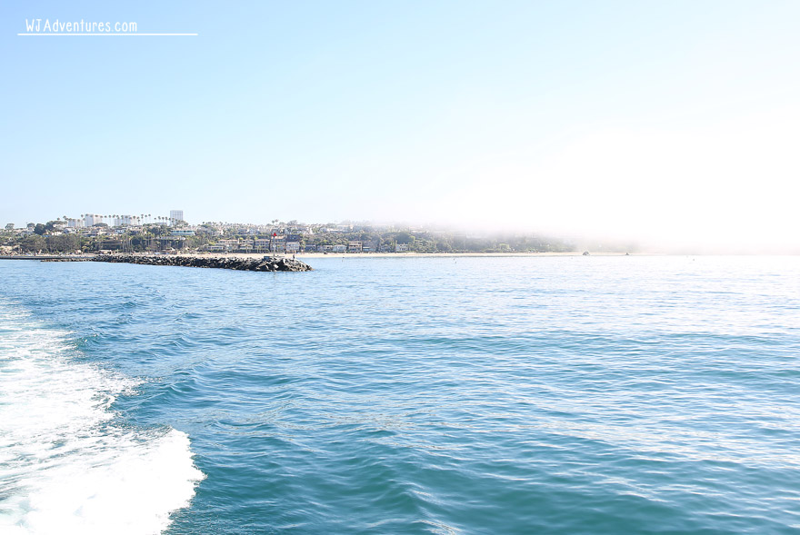 Newport Harbor view from Catalina Flyer